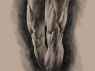 Legs Study in Procreate by adammiconi