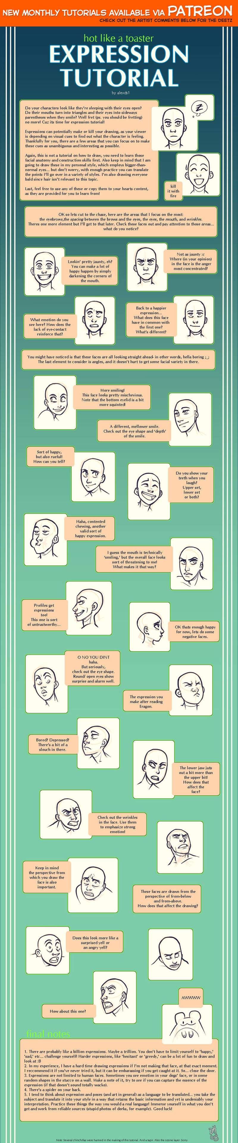 Expression tutorial by shingworks