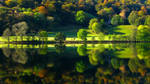 Autumn Glow III by bongaloid