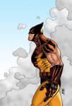Wolverine by markg