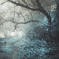 exploring dreams XXIII by JoannaRzeznikowska