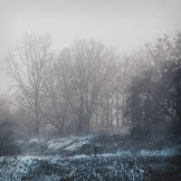 frozen memories II by JoannaRzeznikowska