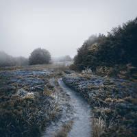 wandering of souls V by JoannaRzeznikowska