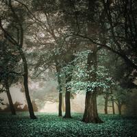 the shelter of the fallen souls XXII by JoannaRzeznikowska