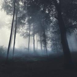 Night Is a New Day VII by JoannaRzeznikowska