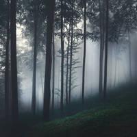 Night Is a New Day IX by JoannaRzeznikowska