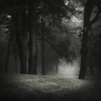 Lost In The Dark by JoannaRzeznikowska