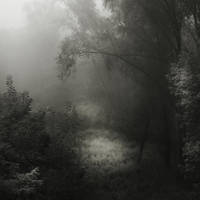 Lost In The Dark II by JoannaRzeznikowska