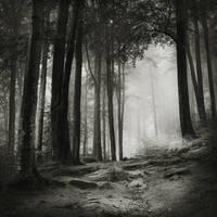 my worlds by JoannaRzeznikowska