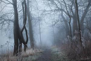 my paths by JoannaRzeznikowska