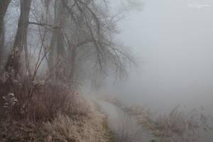 my paths XVIII by JoannaRzeznikowska