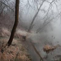 my paths XXI by JoannaRzeznikowska