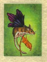 Flutter Mouse by stephanielynn