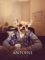 Antoine - Dev' front-end @Yummypets by GrunySo