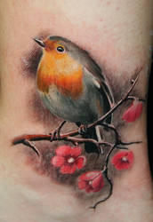Yellow Robin cherryblossoms by Remistattoo