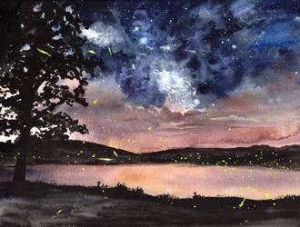 Fireflies Under the Stars by HaleyGottardo