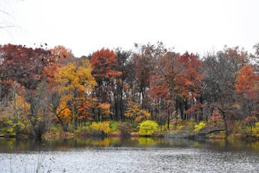 Herrick Lake in Early November 1 by HaleyGottardo