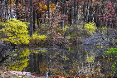 Herrick Lake in Early November 3 by HaleyGottardo