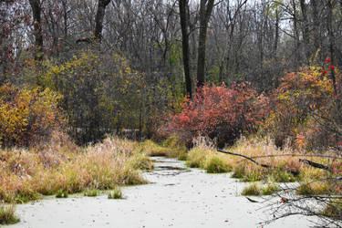 Herrick Lake in Early November 4 by HaleyGottardo