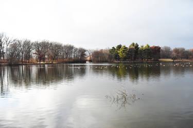 Herrick Lake in Late November 4 by HaleyGottardo