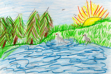 Sandhill Cranes in a Pond in Color Pencil by HaleyGottardo