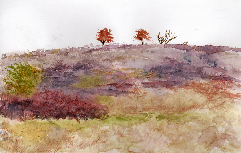 Colors of a Autumn Prairie in Watercolor by HaleyGottardo