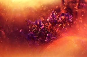 Dream the Last Dream by MarsiaMS