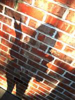 Shadows by HollyheartsBOTDF