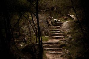 Walking Trail by raven9999