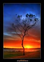 Sinking Sun by Furiousxr