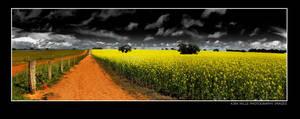 Conola Fields by Furiousxr