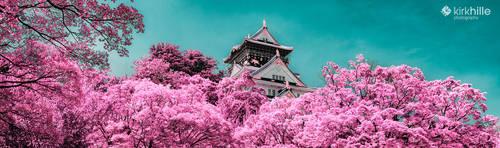 Infa Red - Osaka Castle by Furiousxr