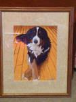 sample custom pet portrait by BellaLyle