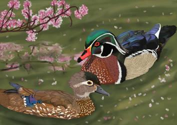 Cherrywood Duck Pond by BellaLyle