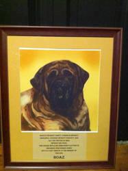 Mastiff -Sample pet portrait by BellaLyle