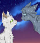 Halfmoon and Jayfeather by Lunatic-Mo-on