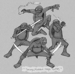 Real Ninjaturtles by peter-schaaff