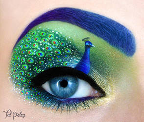 Peacock by scarlet-moon1
