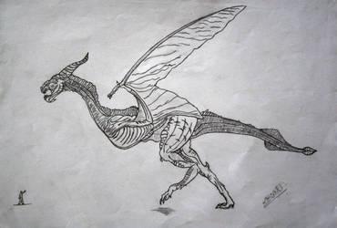 dragons by Spasmedrosetta