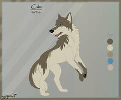 Character Sheet Calix by ypput