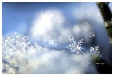 Snowflake by Niophee