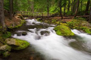 Cold Spring Creek by StevenDavisPhoto