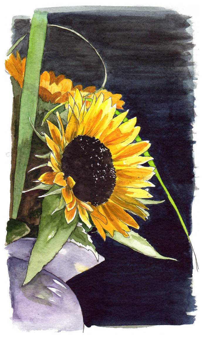 Sunflowers by zornisse