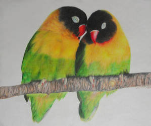 Love Birds by CaitieKatDragon