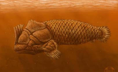 Week 36 - Ancient Fish by danieljoelnewman
