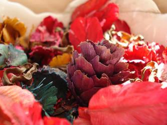 purple pinecone by lailomeiel