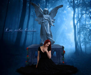 Les Ailes Brisees - Rose by Angel-of-Shadows30