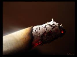cigarette by dnlbrtln