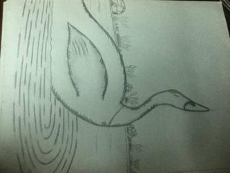 A Swan I Liked by DarkSupernaturalGirl