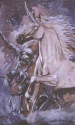 unicorn by toratora5